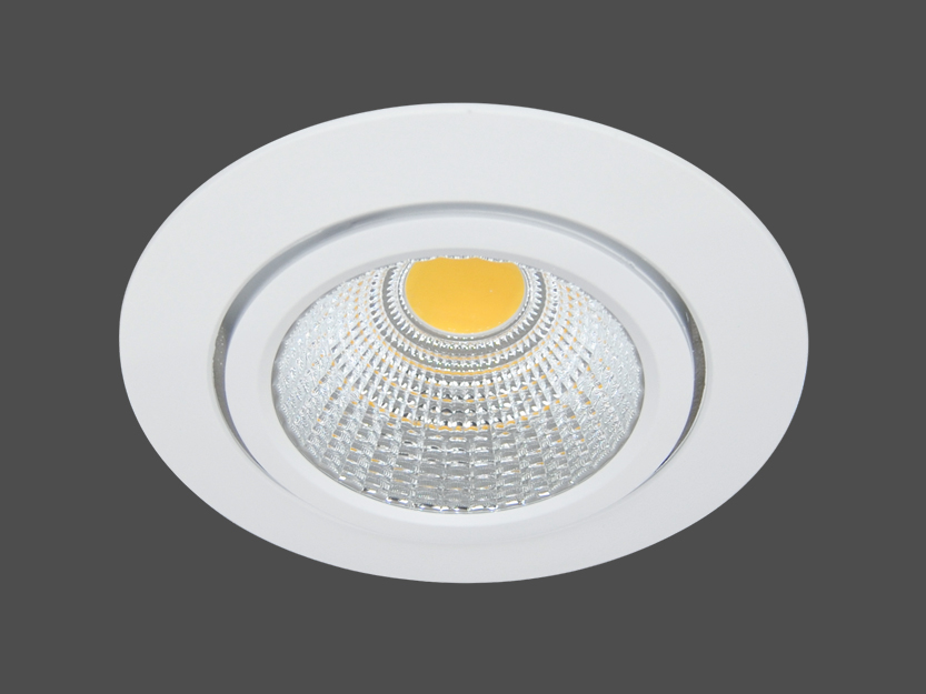20W LED Downlight - 4.500 K - 55° - kardanisch
